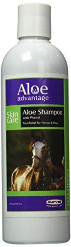 Aloe-Advantage-Shampoo-with-Phenol-16-Ounce-0