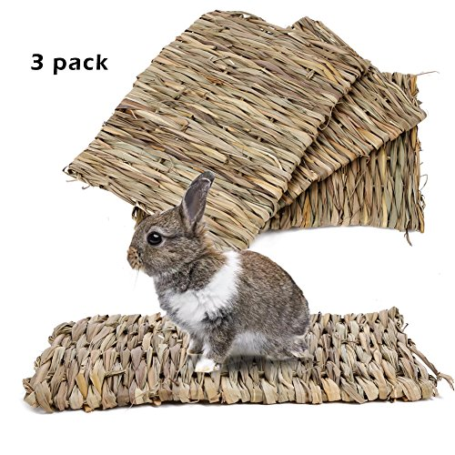BESAZW-Rabbit-MatGrass-Mats-for-RabbitsSafe-Edible-Rabbit-Mats-for-CagesBunny-Chew-Toys-for-Rabbits-0
