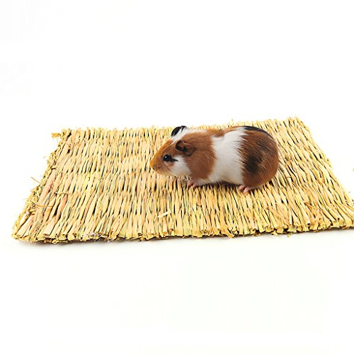 BWOGUE-Natural-Woven-Grass-Mat-for-HamstersRabbitsHedgehogGuinea-PigBunny-Bed-and-Other-Small-Animals-2-Pack-0