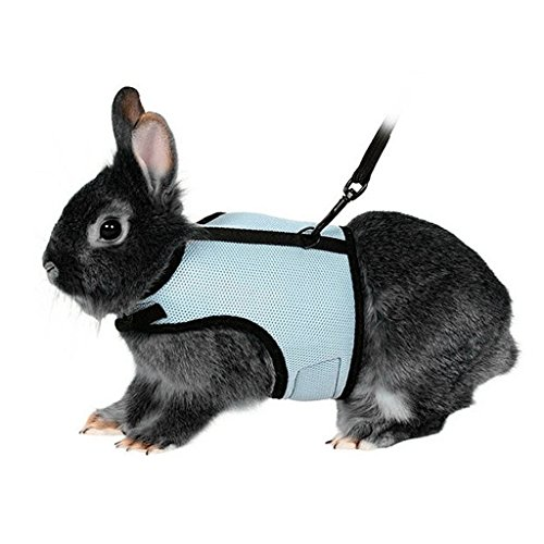 BWOGUE-Soft-Harness-with-Stretchy-Leash-for-Rabbits-0