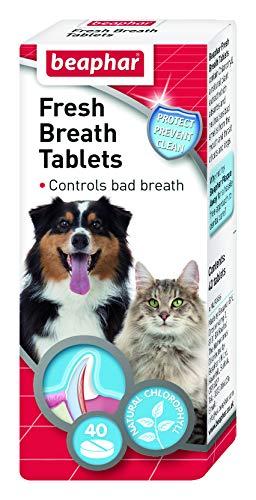 Beaphar-Dog-Cat-Fresh-Breath-40-Tablets-pack-Of-6-0