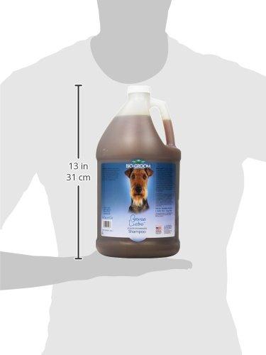 Bio-Groom-Bronze-Lustre-Enhancer-Pet-Shampoo-1-Gallon-0-1
