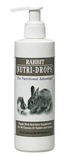 Bovidr-Nutri-Drops-for-Rabbit-Cavy-0