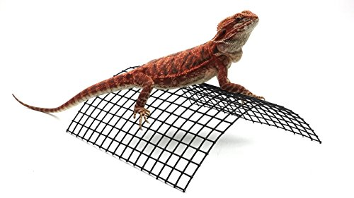 Carolina-Custom-Cages-Bearded-Dragon-Tanning-Arch-Reptile-Habitat-Accessory-0-0