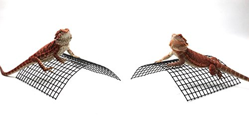 Carolina-Custom-Cages-Bearded-Dragon-Tanning-Arch-Reptile-Habitat-Accessory-0-1