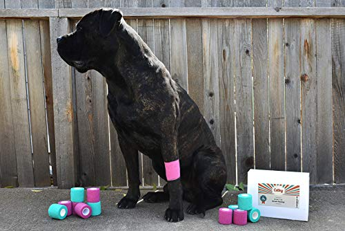 Celley-12-Pack-Cohesive-Bandage-Wrap-for-Dogs-Cats-Sports-Medical-First-Aid-2-Inch-x-15-Feet-Rolls-0-2