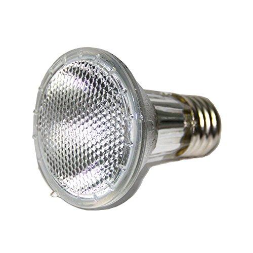DC-ADYOU-Turtle-Heat-Lamp-Bulb-Splash-Proof-Halogen-Light-Bulbs-for-Aquariums-and-Chameleon-0-1