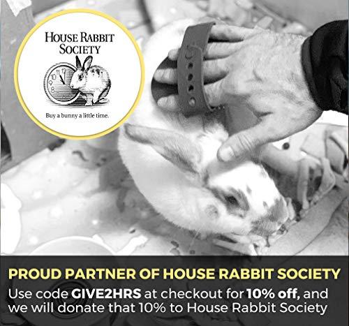 Dasksha-Rabbit-Grooming-Kit-with-Rabbit-Grooming-Brush-Rabbit-Hair-Brush-and-Rabbit-Hair-Remover-Bunny-Guinea-Pig-0-2