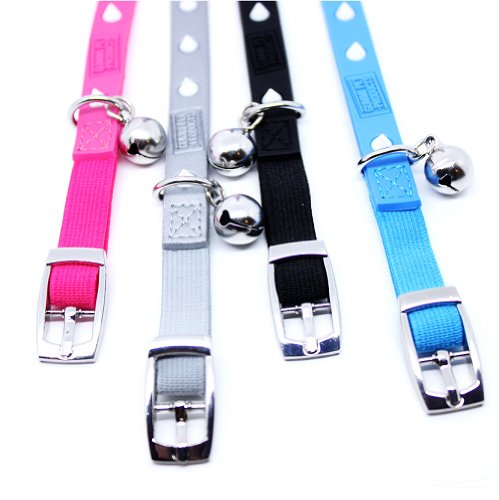 Designers-Novelty-Glow-Spikes-Snag-Proof-Safety-Small-Breed-DogCat-Collar-Fiesta-Blue-XS-0-1
