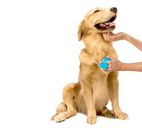 Dexas-StressBuster-Massaging-Pet-Brush-Blue-0-1