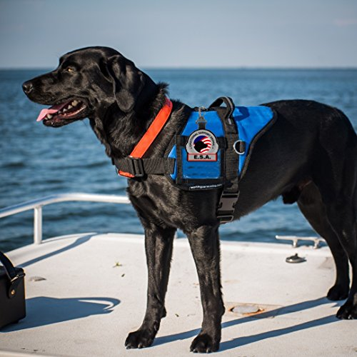 Emotional-Support-Animal-ESA-Clip-on-Identification-Hanging-Patch-Tag–Clips-onto-a-Service-Dog-Vest-Harness-Collar-Leash-or-Carrier-0-1