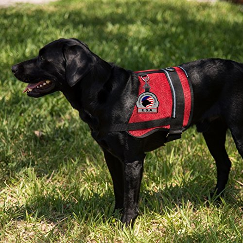 Emotional-Support-Animal-ESA-Clip-on-Identification-Hanging-Patch-Tag–Clips-onto-a-Service-Dog-Vest-Harness-Collar-Leash-or-Carrier-0-2