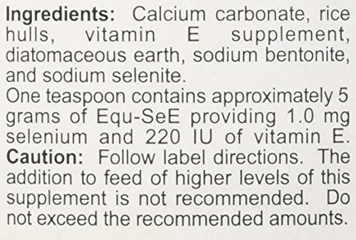 Equ-SeE-Powder-5-lb-0-0
