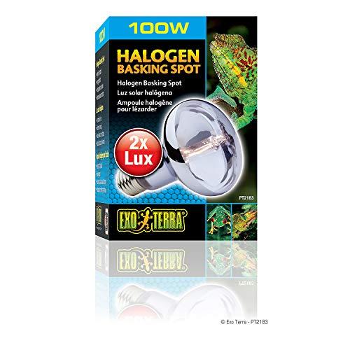 Exo-Terra-Sun-Glo-Daylight-Halogen-Lamp-0