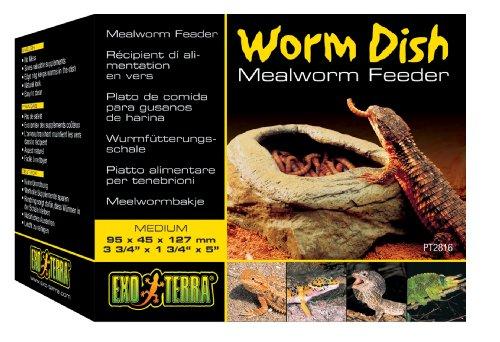 Exo-Terra-Worm-Dish-Mealworm-Feeder-0-1