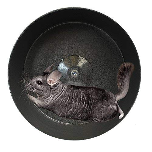 Exotic-Nutrition-15-Chin-Sprint-All-Metal-Exercise-Wheel-for-Chinchillas-Prairie-Dogs-Rats-Other-Small-Animals-0