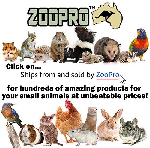 Exotic-Nutrition-Grip-Strip-for-Silent-Runner-Pet-Exercise-Wheels-0-1