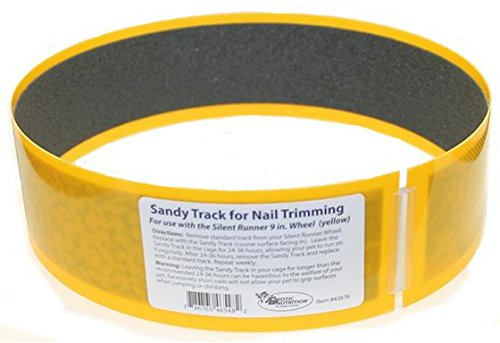 Exotic-Nutrition-Sandy-Track-for-Silent-Runner-9-0