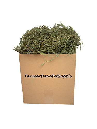 FarmerDavePetSupply-3-Lb-Second-Cut-Timothy-Hay-Bunny-Guinea-Pig-and-Chinchilla-Hay-0