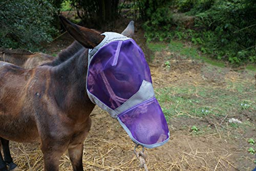G-Quiet-Ride-Horses-Fly-Mask-with-Nose-Cover-0