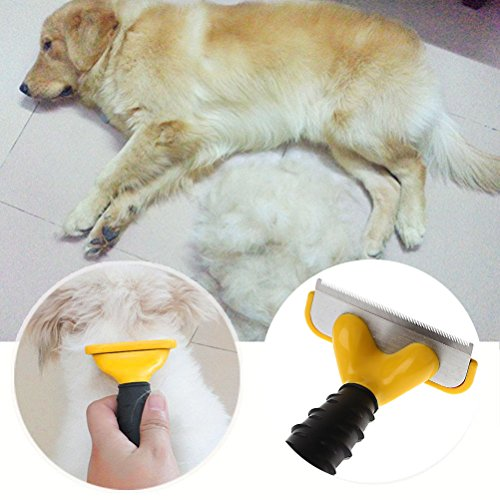Greenery-Safe-Sanitary-Pet-Grooming-Comb-Brush-Trimmer-Shaver-Clipper-Shedding-Demanting-Tool-for-Small-Medium-Large-Dogs-Cats-with-Short-to-Long-Hair-0-2
