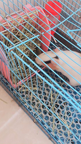 Hay-Feeder-Pet-Rabbit-Cage-Rack-Manger-Easy-Install-Less-Wasted-Free-Food-Dispenser-Clean-Dry-for-Guinea-Pig-Rabbits-Bunny-Chinchilla-0-1