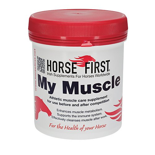 Horse-First-My-Muscle-0