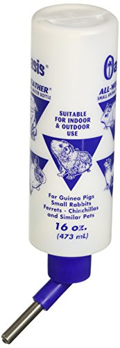 Kordon-OASIS-80610-All-Weather-Water-Bottle-for-Guinea-Pig-16-Ounce-0