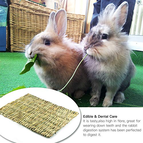 Lmlly-Rabbit-Grass-Mat-Natural-Hay-Woven-Chew-Toy-Resting-Pad-for-Gerbils-Bunny-Hamster-Chinchillas-Guinea-Pigs-Ferret-Small-Animals-0-1