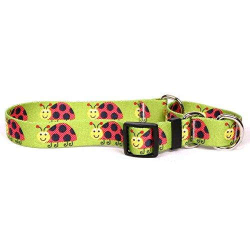 Lovely-Ladybugs-Martingale-Designer-Dog-Collar-0