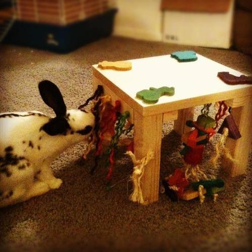 Mini-Activity-Zone-Rabbit-Toy-0-1