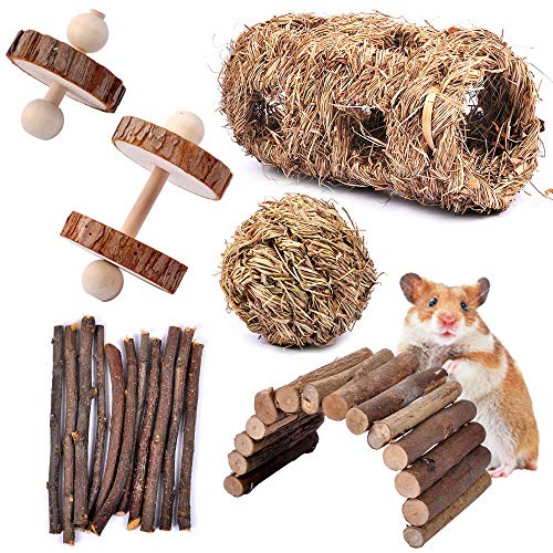 MyfatBOSS-Pack-of-6-Hamster-Chew-Toys-Natural-Apple-Sticks-Hamster-Ladder-Bridge-Unicycle-Dumbells-Exercise-Roller-Teeth-Care-Molar-Toy-for-Rabbits-Rat-Guinea-Pig-Chinchilla-and-Other-Small-Pets-0