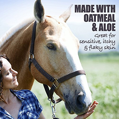 Natural-Rapport-Horse-Shampoo-Conditioner-Full-Mane-Tail-Treatment-for-Horses-Equine-Wash-0-2