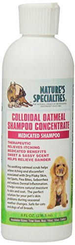 Natures-Specialties-Colloidal-Oatmeal-Pet-Shampoo-8-Ounce-0