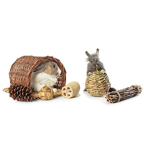Niteangel-Twig-Tunnel-Small-Animal-Hideout-Timothy-Club-Mat-Natural-Grass-Balls-Chew-Toys-Kits-0-1
