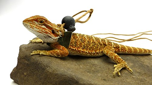 Ogle-Lizard-Leash-Limited-Edition-Green-Scales-0