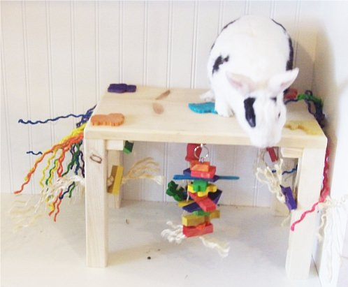 Original-Activity-Zone-Rabbit-Toy-0-0