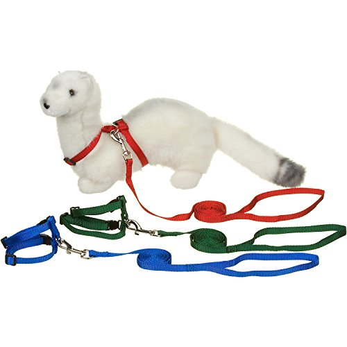PETCO-Deluxe-Ferret-Harness-and-Lead-Set-ColorAssorted-by-Ferret-Frenzy-0