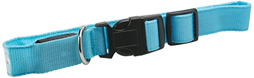 Paws-Pals-LED-Pet-Dog-Cat-Neck-Collar-Flashing-Color-Light-Up-Night-Safety-Strap-Large-Blue-0