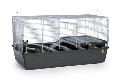 Prevue-Pet-Products-528-Universal-Small-Animal-Home-Dark-Gray-0