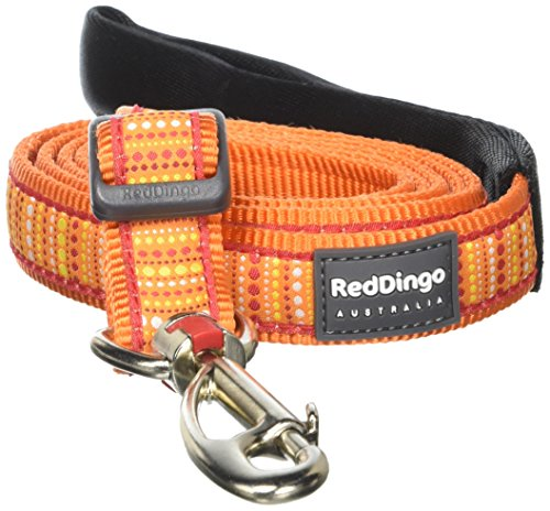 Red-Dingo-Lotzadotz-Orange-Dog-Lead-Large-0