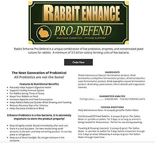 Rowe-Rabbit-Enhance-Pro-Defend-117gm-0-0