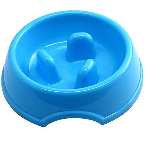 S-SSOY-Slow-Feed-Bowl-for-Small-Dogs-and-Cats-0