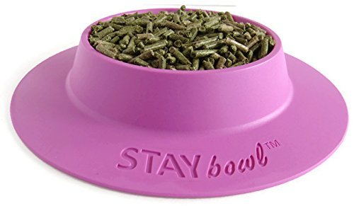 STAYbowl-Tip-Proof-Bowl-for-Guinea-Pigs-and-Other-Small-Pets-Lilac-Purple-Large-34-Cup-Size-New-0-0