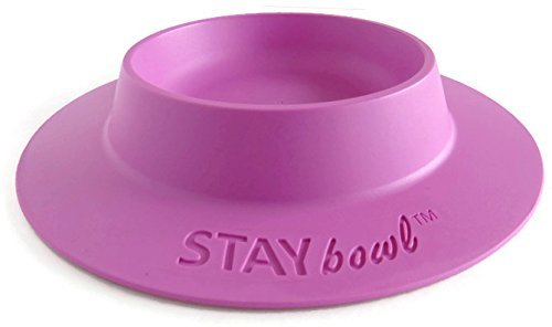 STAYbowl-Tip-Proof-Bowl-for-Guinea-Pigs-and-Other-Small-Pets-Lilac-Purple-Large-34-Cup-Size-New-0