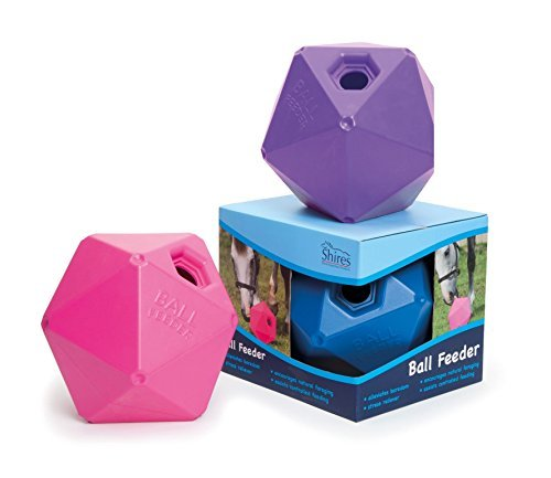 Shires-Ball-Feeder-9-Purple-by-Shires-0