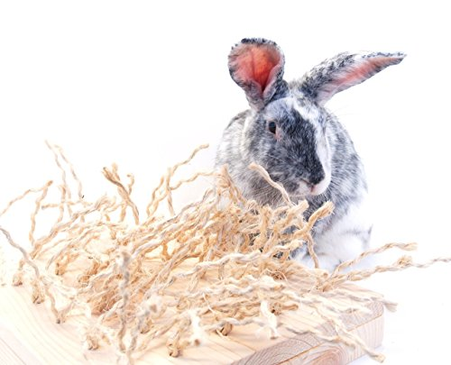 Sisal-Carpet-Chewing-and-Digging-Station-Rabbit-Accessories-0-0