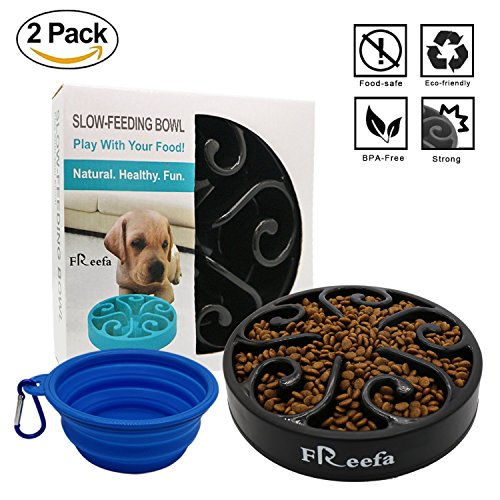 Slow-Feeder-Dog-Bowl-Bloat-Stop-Dog-Food-Bowl-Maze-Interactive-Puzzle-Non-Skid-Come-with-Free-Travel-Bowl-0-0