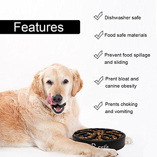 Slow-Feeder-Dog-Bowl-Bloat-Stop-Dog-Food-Bowl-Maze-Interactive-Puzzle-Non-Skid-Come-with-Free-Travel-Bowl-0-2