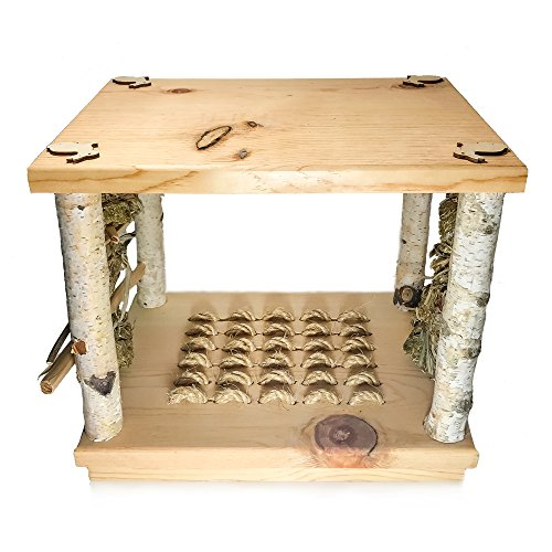 Small-Pet-Select-Wonderland-Play-Table-0